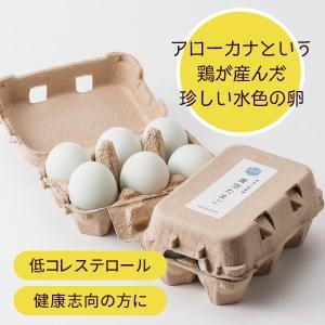 伊豆三島卵屋 青空たまご 6個入り|muranoeki