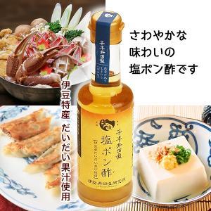 伊豆産だいだい果汁使用千年井田塩 塩ポン酢200ml|muranoeki