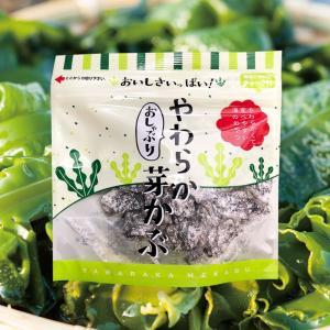 おしゃぶり やわらか 芽かぶ muranoeki