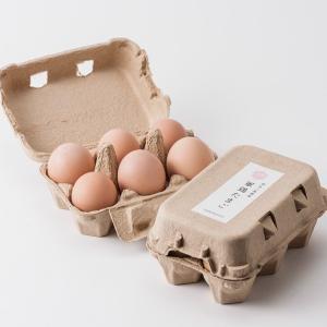 伊豆三島卵屋 しゃものたまご 6個入り|muranoeki