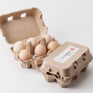伊豆三島卵屋 鳥骨鶏のたまご 6個入り|muranoeki