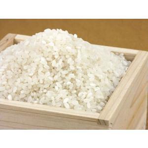【24年産】新潟産コシヒカリ100% 無洗米5kg muranokajiya