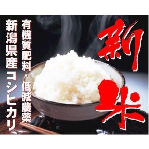 新米【27年産 無洗米】田辺さん家の新潟産コシヒカリ100% 5kg muranokajiya