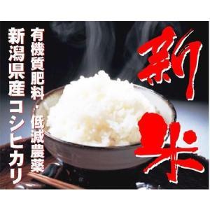 新米【28年産 無洗米】田辺さん家の新潟産コシヒカリ100% 10kg muranokajiya