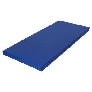 サンワカケン 床ずれ防止サンケンマット 低反発マットレス サスティナ91cm幅 ここちよい 快適 敷きパッド|muratakagu