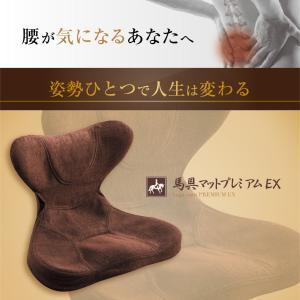 馬具マットプレミアムEX|muratakagu