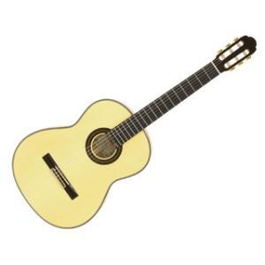 Aria/アリア  A-100F クラシックギター 【Flamenco】【ソフトケース付き】【ARIACG】