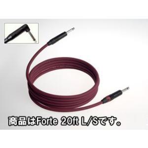 EVIDENCE AUDIO/エビデンス・オーディオ  【FTRS20】 Forte 20ft L/S (フォルテシリーズ/楽器用シールドケーブル) 6m|murauchi