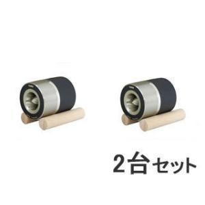 FOSTEX/フォステクス  【2台セット!】 スピーカーユニット ホーンスーパーツイーター T90A|murauchi
