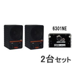 FOSTEX/フォステクス  【2台セット!】アクティブ・モニタースピーカー 6301NE|murauchi