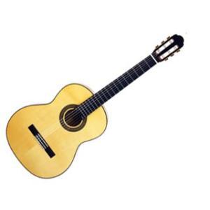 Aria/アリア  A-50F クラシックギター 【Flamenco】【ソフトケース付き】【ARIACG】|murauchi