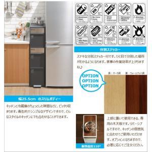 ゴミ箱 like-it BWP-11BS BR 分別スイングステーションワイド 吉川国工業所|murauchikagu|11