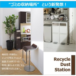 ゴミ箱 like-it BWP-11BS BR 分別スイングステーションワイド 吉川国工業所|murauchikagu|08