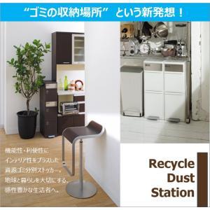 ゴミ箱 like-it BWP-12BS NA 分別スイングステーションワイド 吉川国工業所|murauchikagu|09