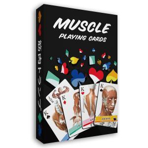 筋肉トランプ 改訂版 muscle