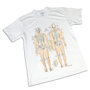 骨チャートデザイン(筋T) スポーツTシャツ|muscle