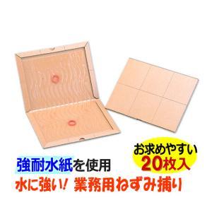 あすつく対応/水に強い/強耐水紙 業務用ねずみ捕り 20枚/ グルットプロN版 ねずみ駆除 粘着シート|mushi-taijistore
