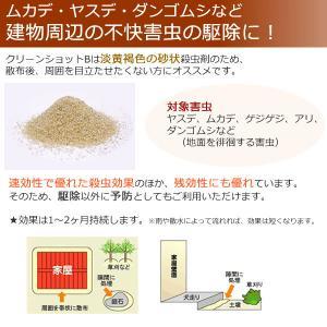 あすつく対応/少量袋 クリーンショットB (3kg) 砂状 微粒剤 目立ちにくい コオロギ トビムシ ムカデ 害虫駆除|mushi-taijistore|02