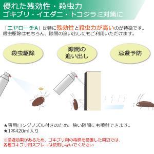 あすつく対応/エヤローチA 420ml プロも使う 業務用ゴキブリ駆除殺虫スプレー|mushi-taijistore|02