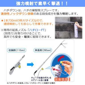 ジャンボ缶 スズメバチ巣駆除剤 ハチダウン 730ml 広角度・強力噴射 プロ仕様|mushi-taijistore|02