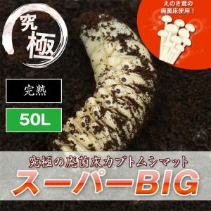 幼虫 昆虫 徳用50L カブトムシ幼虫のエサ 廃菌床カブトムシマット「スーパーBIG」/幼虫昆虫