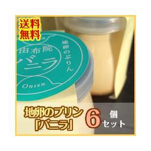 昔なつかしおいしいぷりん!地卵のプリン バニラ(ばにら) 6個セット 送料無料! mushiya-purin