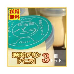 昔なつかしおいしいぷりん!地卵のプリン バニラ(ばにら) 3個セット 送料無料! mushiya-purin