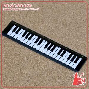 定規 ケンバン DC1015-01  ミュージックアミューズ|music-amuse