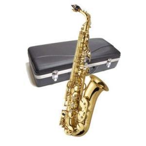 J.Michael(ジェイ・マイケル) AL-500 E♭ musicplant