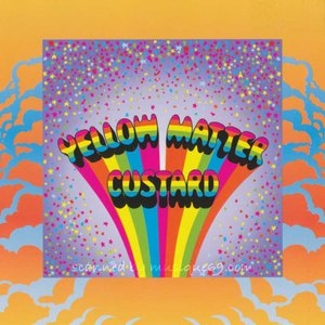イエローマターカスタード Yellow Matter Custard - One Night in New York City (CD)|musique69