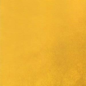 渡辺隆雄 小澤敏也 中西文彦 宮川剛 (Pikaia Pandeiro Special) - Tokyo Volcano (CD)|musique69