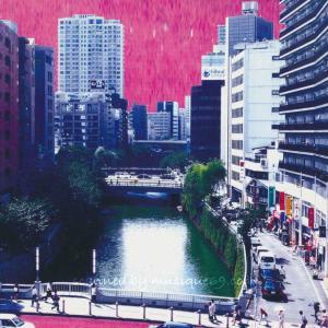 アフリカンズ×巻上公一 坂本弘道 - アフリカンズ (Trans Primitive Atmosphere) musique69