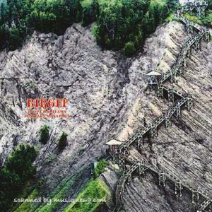 ホッピー神山 藤掛正隆 (Birgit) - ビアギッテ (CD)|musique69