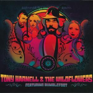 トニーハーネル Tony Harnell & The Wildflowers featuring Bumblefoot musique69