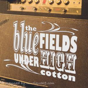 ダンベアード Dan Baird (The Bluefields) - Under High Cotton (CD)|musique69