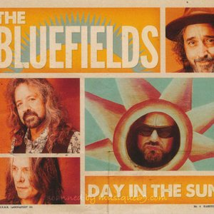 ダンベアード Dan Baird (The Bluefields) - Day in the Sun (CD) musique69
