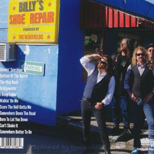 ダンベアード Dan Baird (The Bluefields) - Day in the Sun (CD)|musique69|02