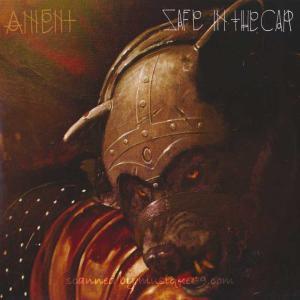 パールジャム Pearl Jam (Ament) - Safe in the Car/ Captain Cook (vinyl)|musique69