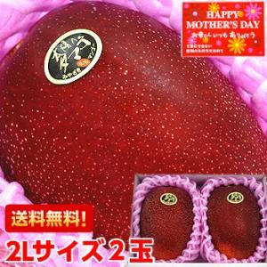 母の日 2021 ギフト 太陽のタマゴ 大玉2Lサイズ2玉