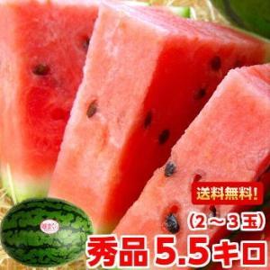 ■商品内容:静岡・愛知産 姫まくら 秀品2〜3玉 5.5kg以上(3L〜Lサイズ)  ■送料について...