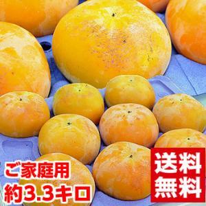 岐阜県産 太秋柿 ご家庭用3.3kg|muskmelon