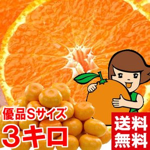 三ケ日みかん(早生) 優品Sサイズ 3kg