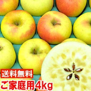 長野県産 ぐんま名月 ご家庭用4.5kg|muskmelon