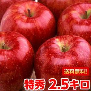 長野県産シナノスイート 特秀2.5kg|muskmelon