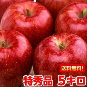 長野県産シナノスイート 特秀5kg|muskmelon