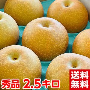 愛知県産 あきづき梨 秀品2.5kg muskmelon