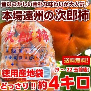 静岡県産 次郎柿4kg(産地徳用袋)|muskmelon