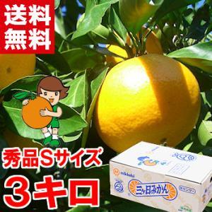 三ケ日みかん(早生) 秀品Sサイズ 3kg