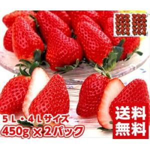 大粒章姫&紅ほっぺいちご450g×2