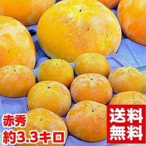岐阜県産 太秋柿 赤秀3.3kg|muskmelon